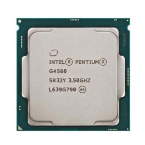 Intel-DualCore G4560